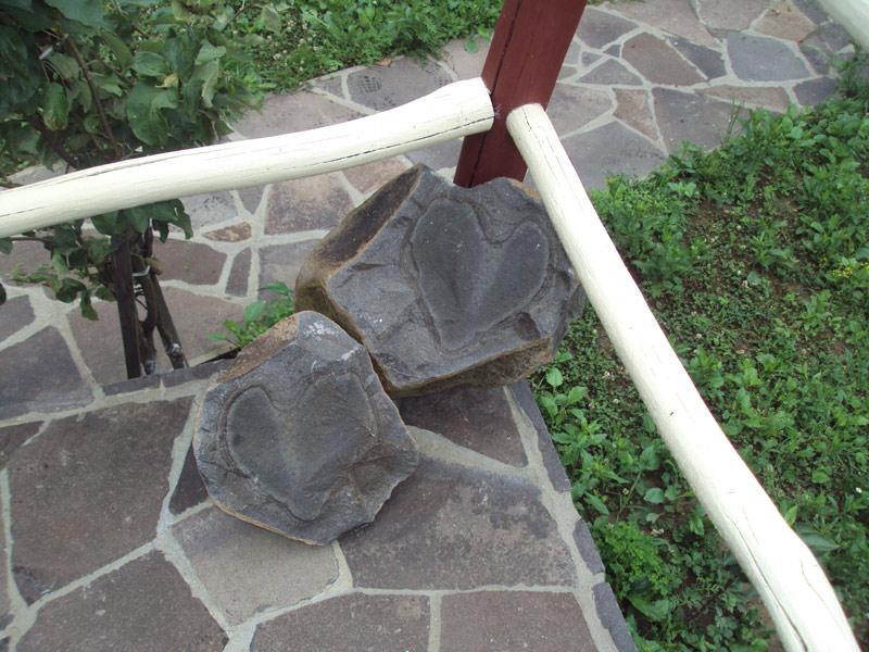 http://kariersliva.com.ua/images/Gallery/DSC03605.jpg